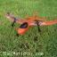SkyBird mini rc plane thumbnail 2
