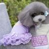 ชุดกระโปรงสุนัข Sweet Purple พร้อมส่ง
