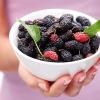 12 ประโยชน์มัลเบอร์รี ที่ดีต่อสุขภาพ (หนึ่งในส่วนผสมน้ำมังคุุดทิพย์มงคล)