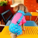 ชุดสี่ขาสุนัข ทูโทนลายจุด สีฟ้า-ชมพู พร้อมส่ง
