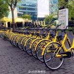 OFO BIKE ธุรกิจจักรยานให้เช่าพันล้าน