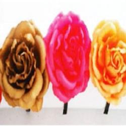 ที่คาดผมดอกไม้จัมโบ้ 3in1