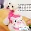 เสื้อกันหนาวสุนัข หมู สีชมพู (พร้อมส่ง) thumbnail 1