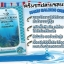 Namu Salmon Cream นามุ แซลมอน ครีม โดย ฟูจิ thumbnail 2