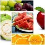 กินอย่างไรให้ผอม (ตอนที่ 1) เรียนรู้การกินในแต่ละวัน