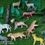 โมเดลสัตว์ป่า งานดี๊ดีตัวใหญ่ส่งฟรี thumbnail 2