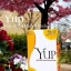 YUP วายอัพ อาหารเสริมลดน้ำหนัก จากสวิตเซอร์แลนด์ ราคาถูกสุด thumbnail 1