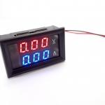 DC Volt/Ammeter Dual Display 0-100V 20A Built-in Shunt [Red-Blue]
