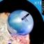 Abalone V-Shape Cream อบาโลน วีเชฟ ครีม ราคาถูก thumbnail 1